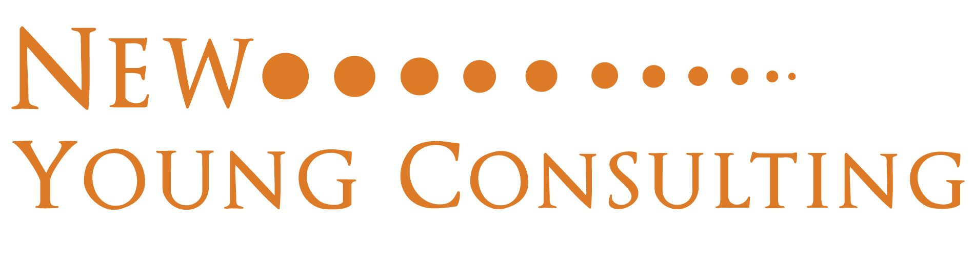 New Young Consulting